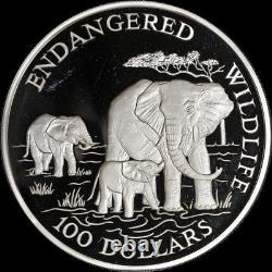 1991 Cook Islands Endangered Wildlife 5 Ounce Silver Elephants. 999 Fine
