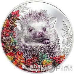 HEDGEHOG Woodland Spirit 1 Oz Silver Coin 500 Togrog Mongolia 2021
