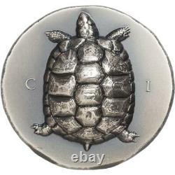 Tortoise 2020 $5 1 Oz Pure Silver Smartminting Coin Cook Islands Cit
